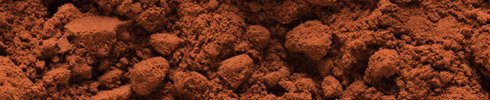 cocoa_powder_1
